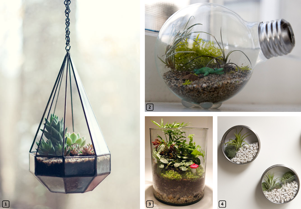 DIY terrarium from bloggers
