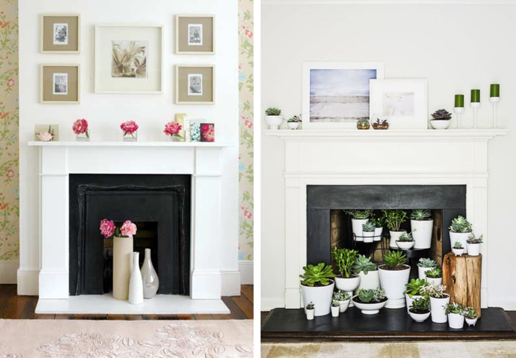 Fireplace place decor with plants and flowers