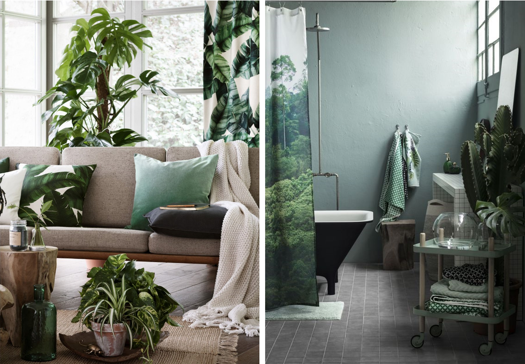 Jungle style with luscious plants