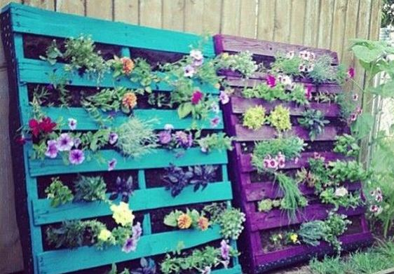 A vegetal wall from wooden pallets
