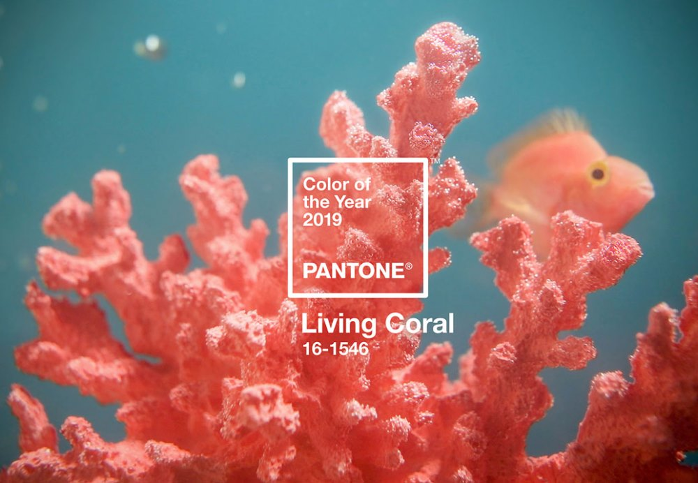Living color, Pantone - BnbStaging the blog