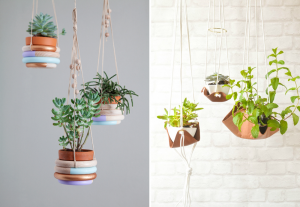 Suspended plants in original pots - BnbStaging the blog
