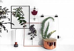 Herbarium decor trend, blog la pigiste